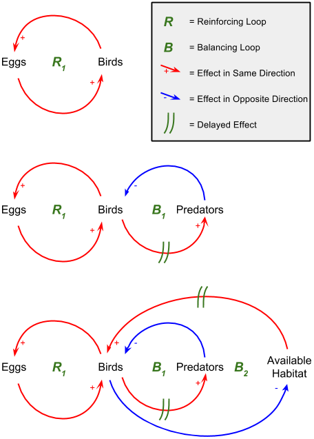 Progressively more detailed causal loop diagrams of an eco-system